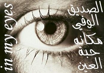 صورة من اروع شعر مدح لصديق