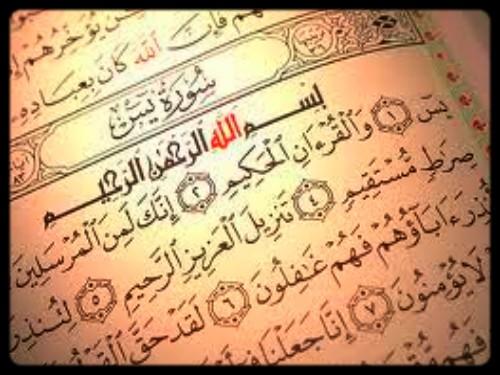 صورة فضل قراءه سورة يس
