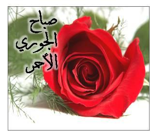 images/5/f79b99084639d04e3db176745ece071d.jpg