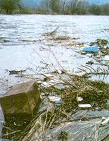 صور تعريف الماء الملوث