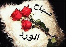 بالصور اشعار الصباح قصائد صباحية مميزة وقمة الحب والعاطفة 20160726 1146