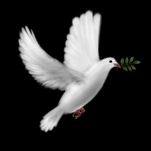 صور تعريف السلم و السلام