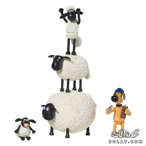 صور خرفان بمناسبة عيد الاضحي Sheep خروف العيد 13190366455.jpg