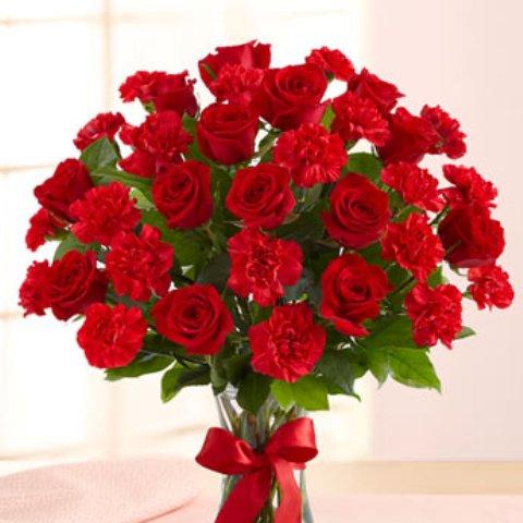 صورة بوكية ورد احمر , ياه كم هي جميلة هذه البوكية من الزهور