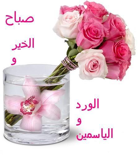 images/img_12/8e932c1188c132631159bc513344dd1d.jpg