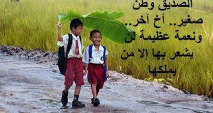 حكم وقصائد عن الصديق