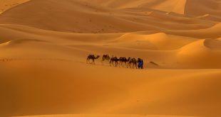 تحضير نص اثار الصحراء