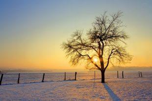 صور اجمل ما قيل عن الصباح