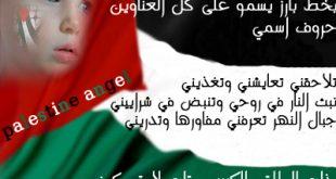 قصيدة عن فلسطين الحبيبة