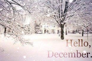 صور صفات مواليد شهر ديسمبر