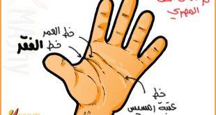 صوره على ماذا تدل الخطوط على اليد