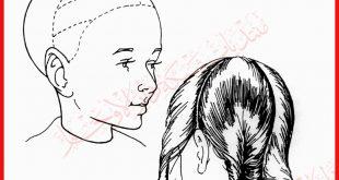 صورة طريقة تقسيم الشعر