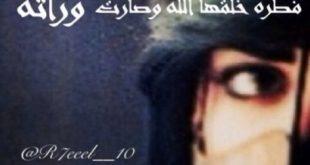 اجمل اشعار الحب البدوية , قصائد غزل بدويه
