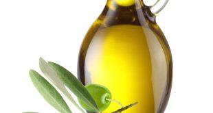 صورة فوائد زيت الزيتون , مع اهم الوصفات بستخدامه