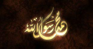 تاريخ المولد النبوي, ما هو تاريخ المولد النبوي