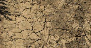 صور مكونات التربة