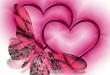 صور ما هي فوائد الحب