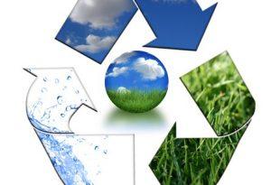 صوره البيئة و المحيط