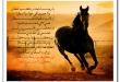 بالصور شعر عن عشق البدو 8e6c5174c150dd36d762a554ab8ff731 110x75
