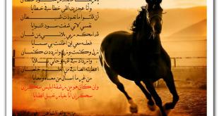 صورة شعر عن عشق البدو