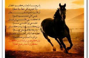 صور شعر عن عشق البدو