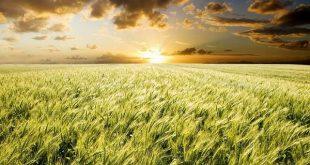 صور طريقة معرفة شروق الشمس