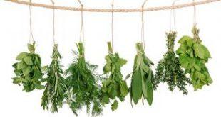 التهاب اللسان وعلاجه بالاعشاب