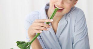 فوائد بذور الكرفس فوائد زيت الكرفس