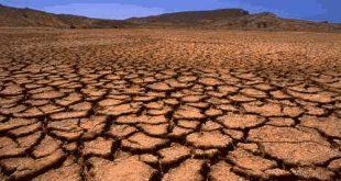 صورة بعض مظاهر تدهور التربة