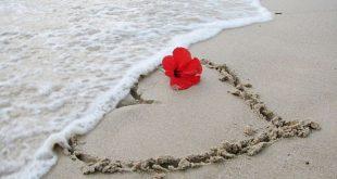 مقالات قصيرة عن الحب