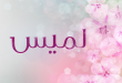صور معنى اسم لميس في اللغة العربية
