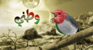 صور وطنية للعرب