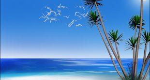 موضوع عن فصل الصيف وشدة الحر