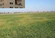 صور نتائج سكنات عدل