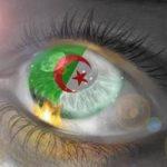 صور علم الجزائر , احلي صور لعلم الجزائر