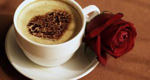 قهوة الصباح مع اجمل الزهور