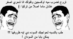 حكمة مضحكة عن البنات