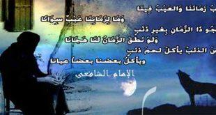 صور حكم الامام الشافعي