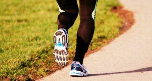 بحث عن مفهوم الجري الطويل