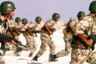 صور عدد افراد الجيش المصرى