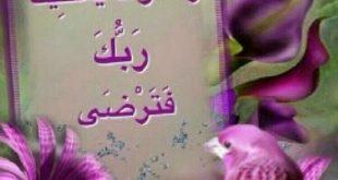 صورة صور صباح الخيرمن اجمل الصور الصباحية