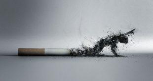 مقال علمي عن التدخين