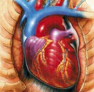 صور علاج ضيق التنفس بسبب القولون