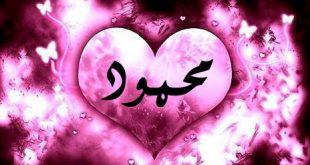 معنى اسم محمود