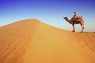 صور موضوع تعبير عن تعمير الصحراء