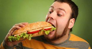 الاطعمة السريعة