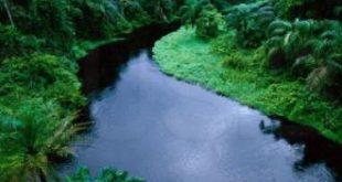 ماهو اغزر نهر في العالم