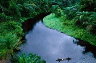 صور ماهو اغزر نهر في العالم