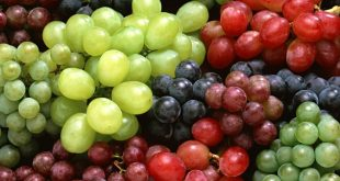 فوائد واضرار العنب للحامل فائدة العنب للحامل