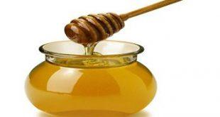 مقالة علمية عن فوائد العسل الطبية
